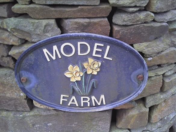 model-farm